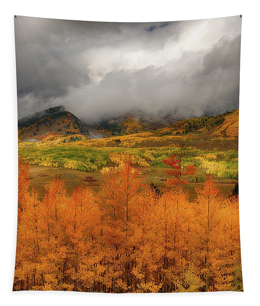 Lena Owens Tapestry featuring the digital art Colorado Fall Colors by OLena Art Brand