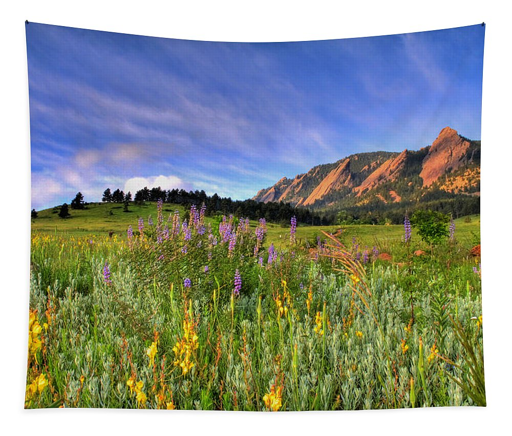 Colorado Tapestry featuring the photograph Colorado Wildflowers by Scott Mahon