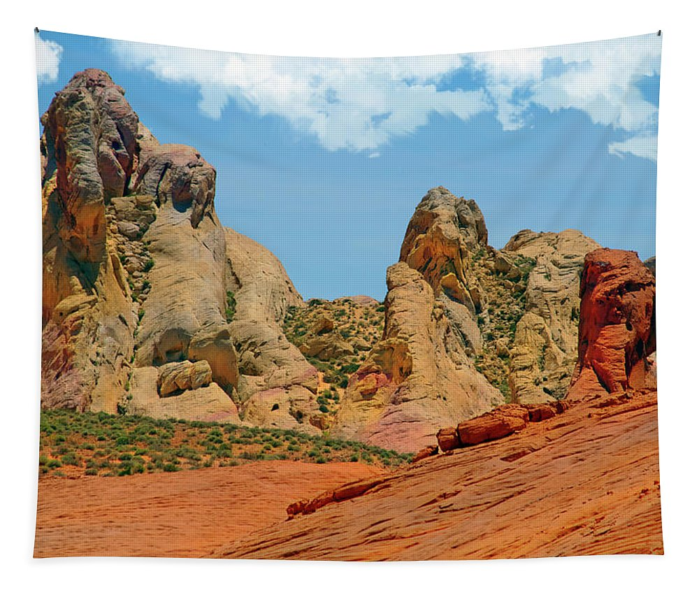 Landscape Tapestry featuring the photograph Colored Sandstones Valley Of Fire by Frank Wilson