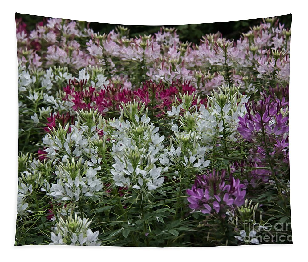 Freshness Tapestry featuring the photograph Colors Of Summer by Tom Gari Gallery-Three-Photography