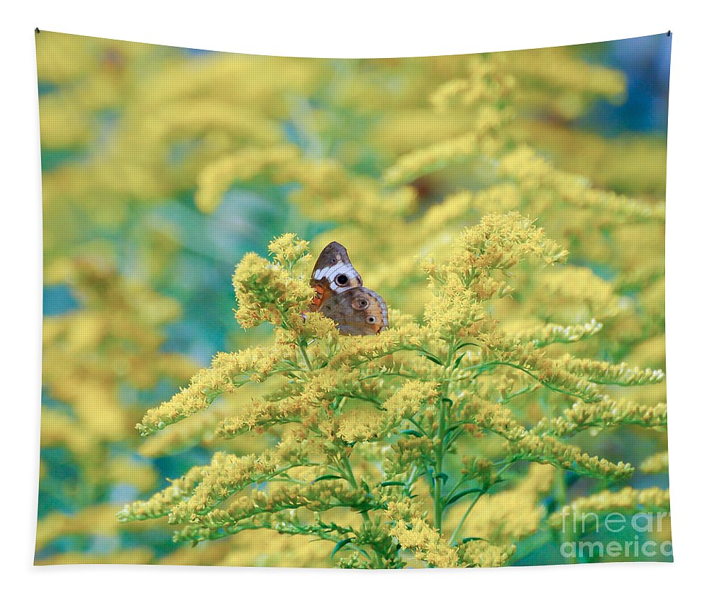 Common Buckeye Butterfly Tapestry featuring the photograph Common Buckeye Butterfly Hides In The Goldenrod by Kerri Farley