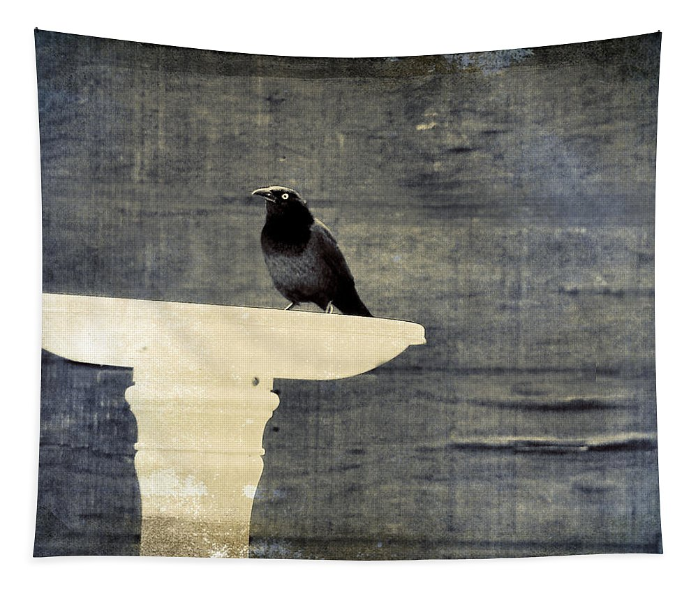Bird Tapestry featuring the photograph Common Grackle by Gothicrow Images