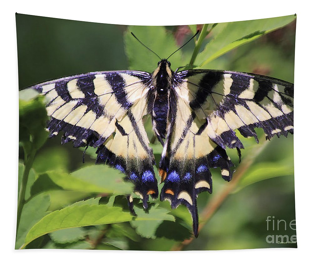 Butterfly Tapestry featuring the photograph Common Yellow Swallowtail by Deborah Benoit