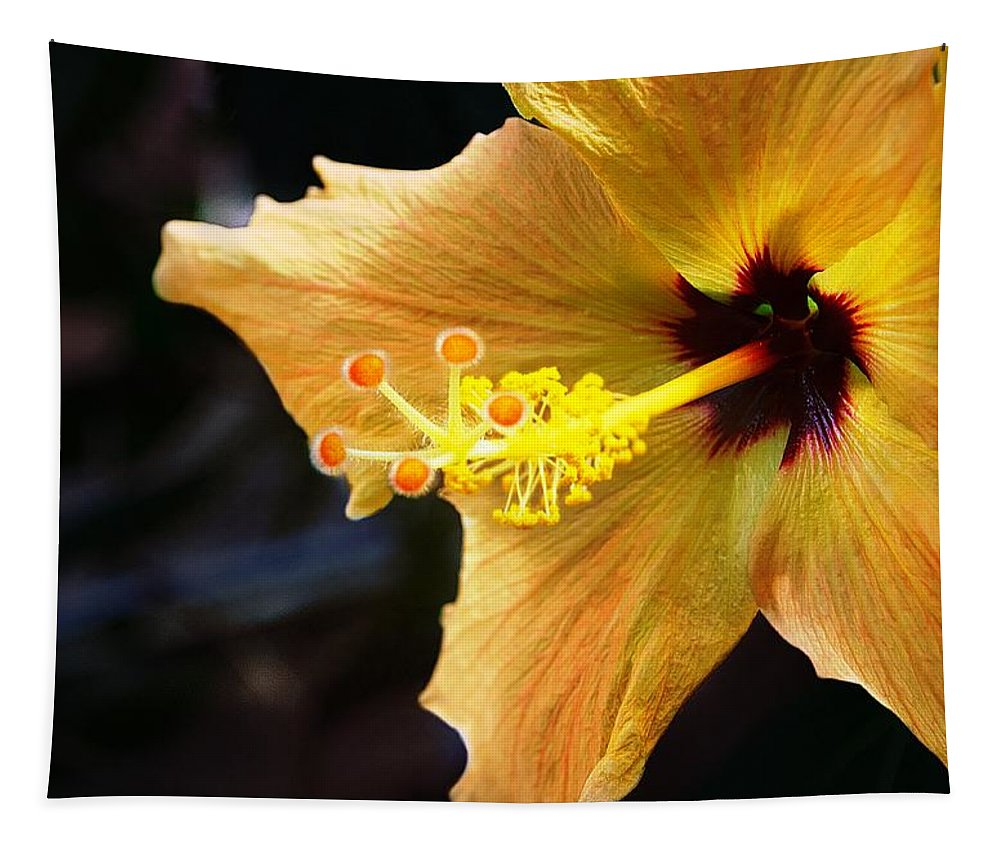 Day Tapestry featuring the photograph Conservatory Hibiscus by Carol J Deltoro