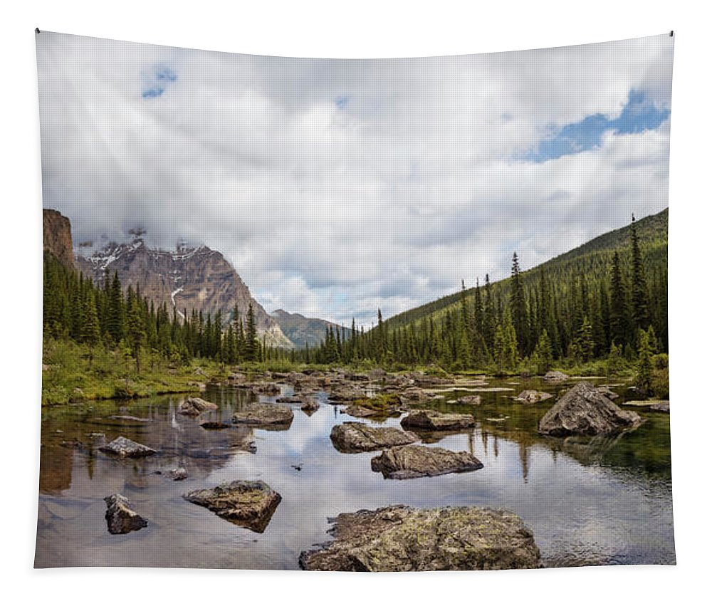 Joan Carroll Tapestry featuring the photograph Consolation Lake Banff by Joan Carroll