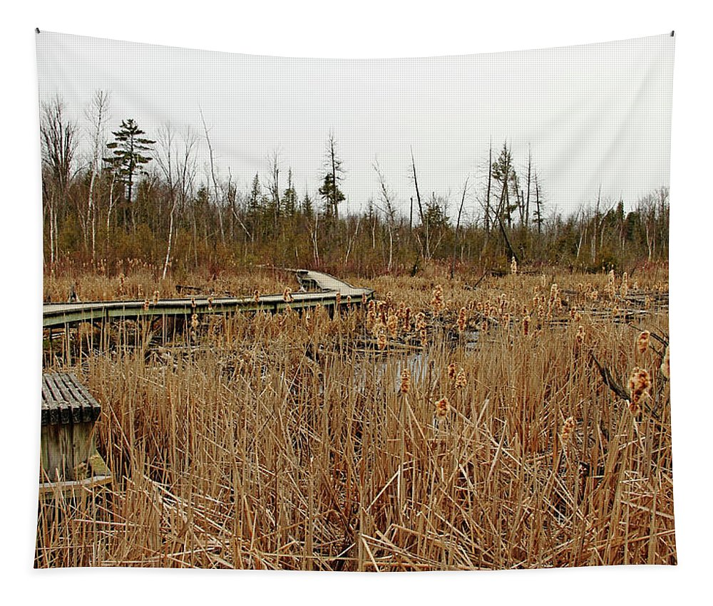 Cambridge Tapestry featuring the photograph Contemplation by Debbie Oppermann