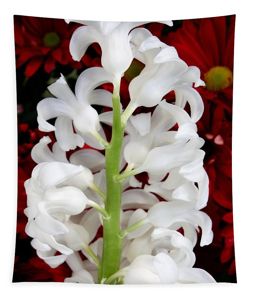 Red And White Flowers Tapestry featuring the photograph Contrasting Red And White Flowers by Carol Groenen