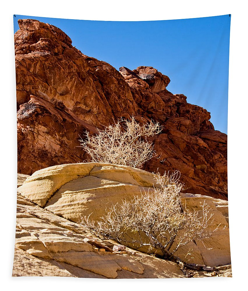 Contrasting Rocks Tapestry featuring the photograph Contrasting Rocks by Chris Brannen