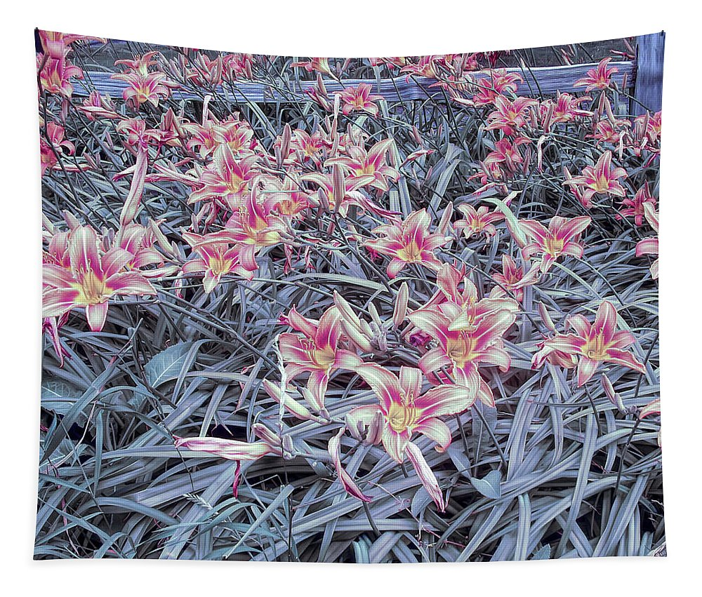 Flower Tapestry featuring the photograph Cool Sunset Field Of Tiger Lillies by Aimee L Maher ALM GALLERY