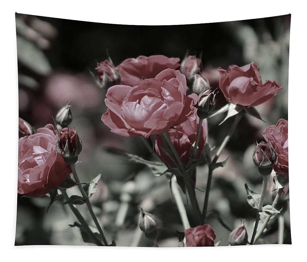 Copper Pink Rose Tapestry featuring the photograph Copper Rouge Rose in Almost Black and White by Colleen Cornelius