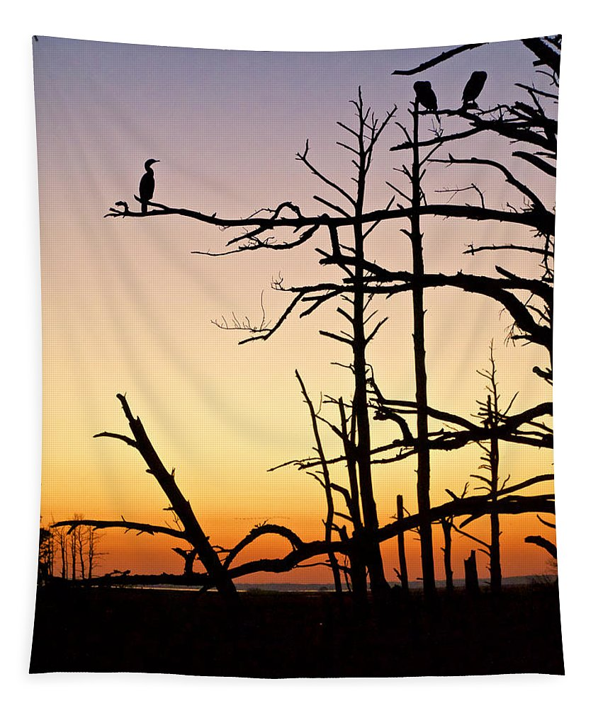 Chincoteague Tapestry featuring the photograph Cormorant Sunset by Rachel Morrison