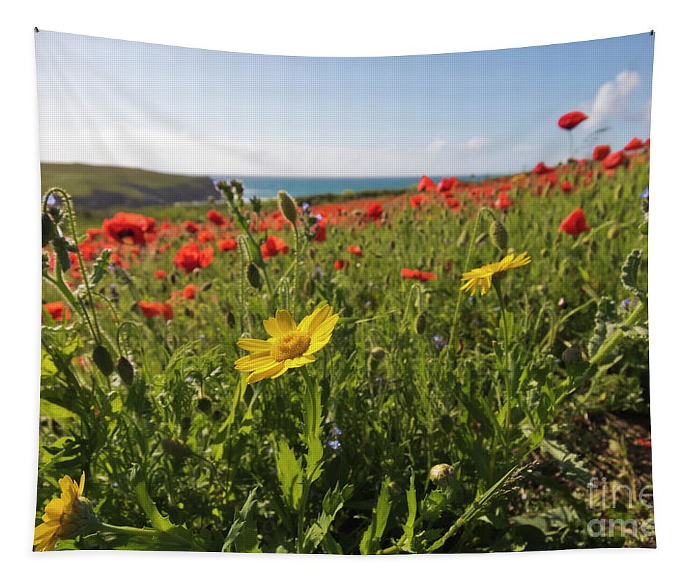 West Pentire Tapestry featuring the photograph Corn Marigold And Poppies by Terri Waters