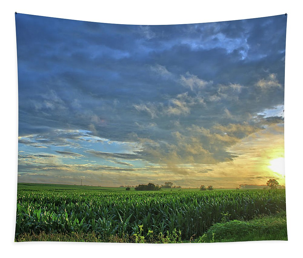 Corn Tapestry featuring the photograph Corn Oceans by Bonfire Photography