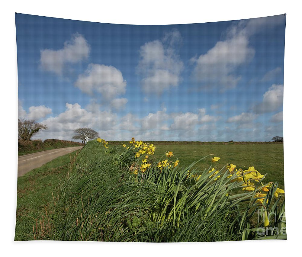 Cornwall Tapestry featuring the photograph Cornish Daffodil Hedge by Terri Waters