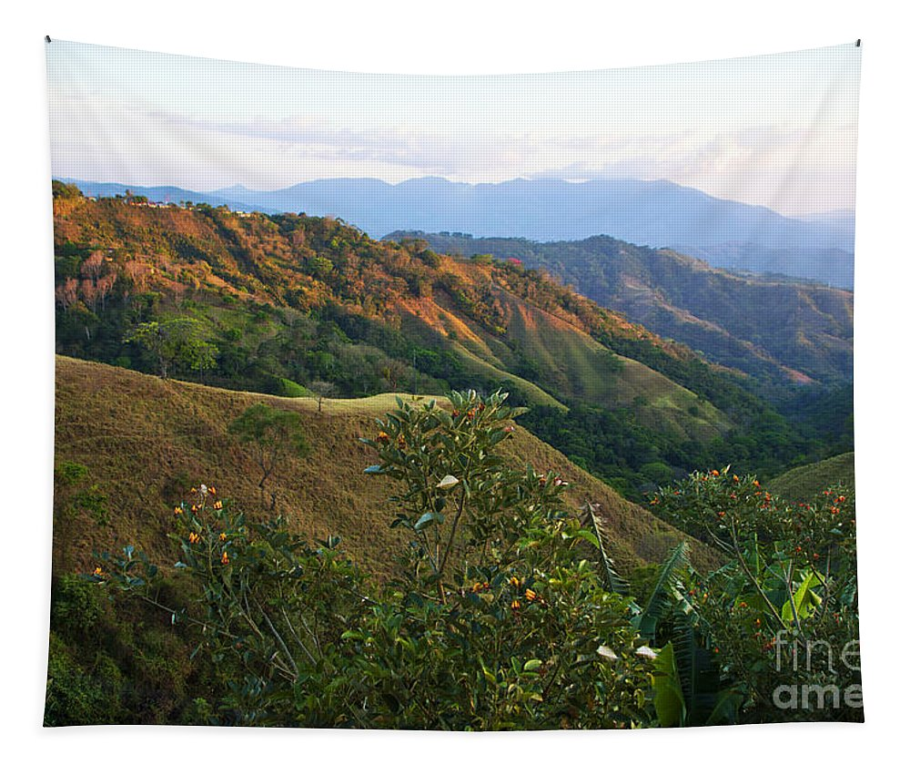Costa Rica Tapestry featuring the photograph Costa Rica Vista II by Madeline Ellis