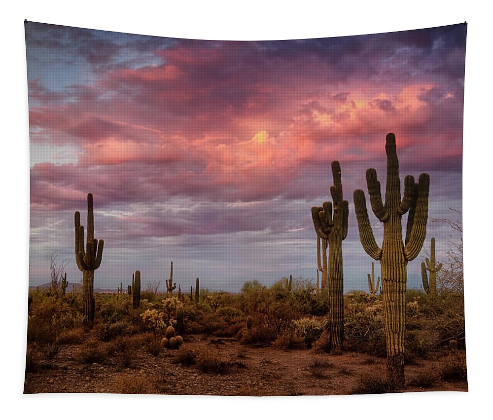 Saguaro Sunrise Tapestry featuring the photograph Cotton Candy Pink Sonoran Sunrise by Saija Lehtonen
