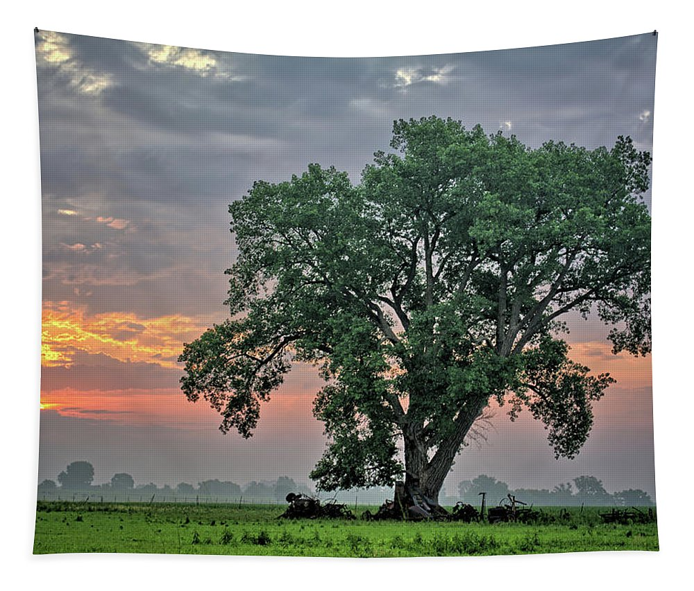Cottonwood Tapestry featuring the photograph Cottonwood Pasture 2 by Bonfire Photography