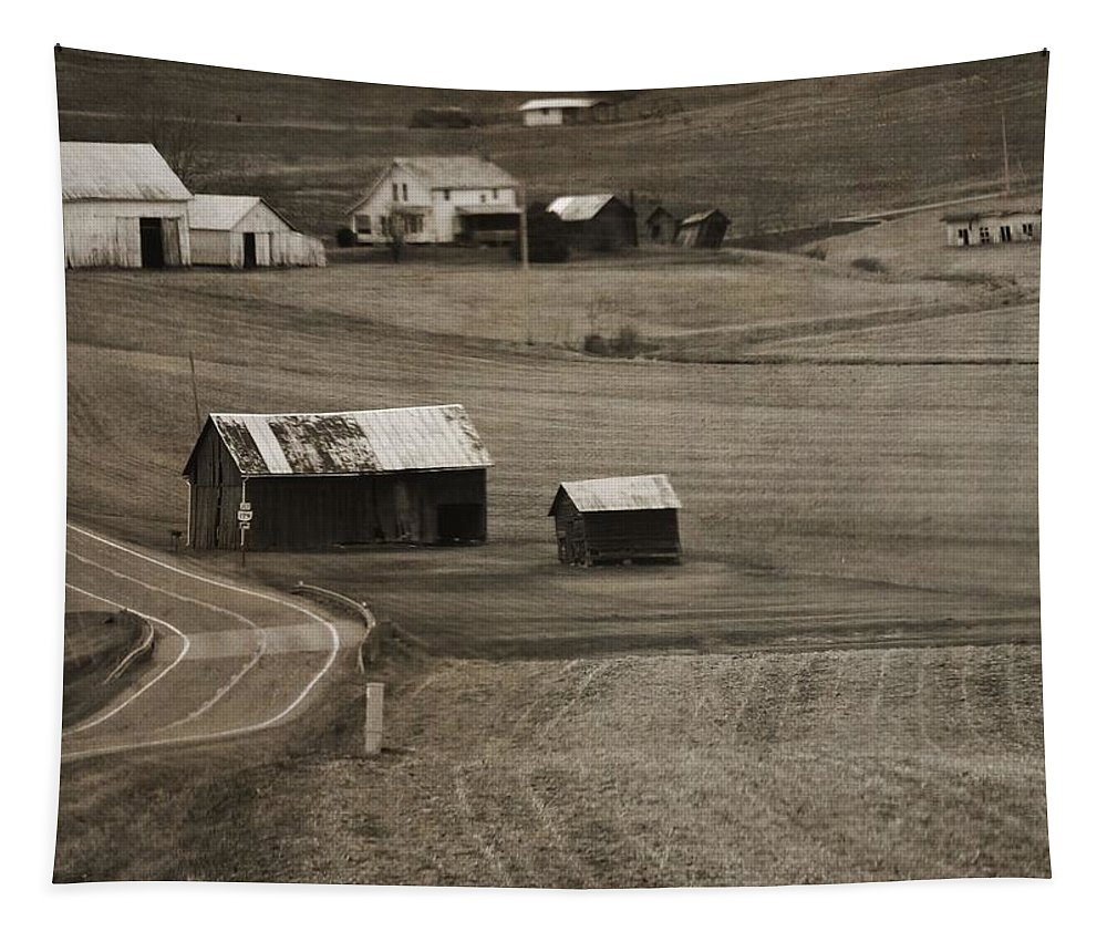 Country Road Holmes County Ohio Tapestry featuring the photograph Country Road Holmes County Ohio by Dan Sproul