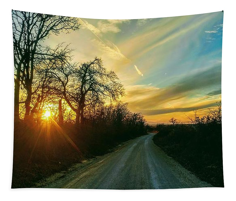 Gravel Road Sunset Texas Tapestry featuring the photograph Country Road Please Take Me Home by Tammy Reynolds