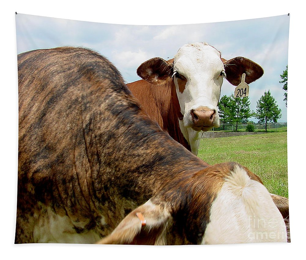 Cow Tapestry featuring the photograph Cows8938 by Gary Gingrich Galleries