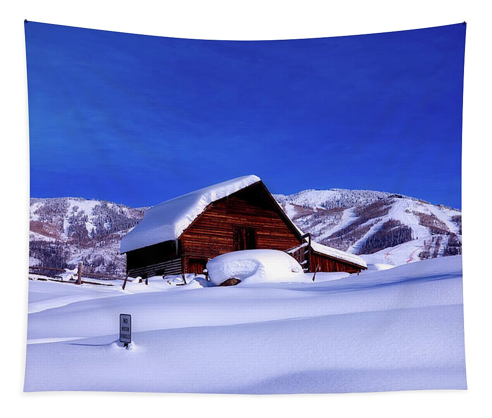 Steamboat Springs Tapestry featuring the photograph Cozy In Winter by Mountain Dreams