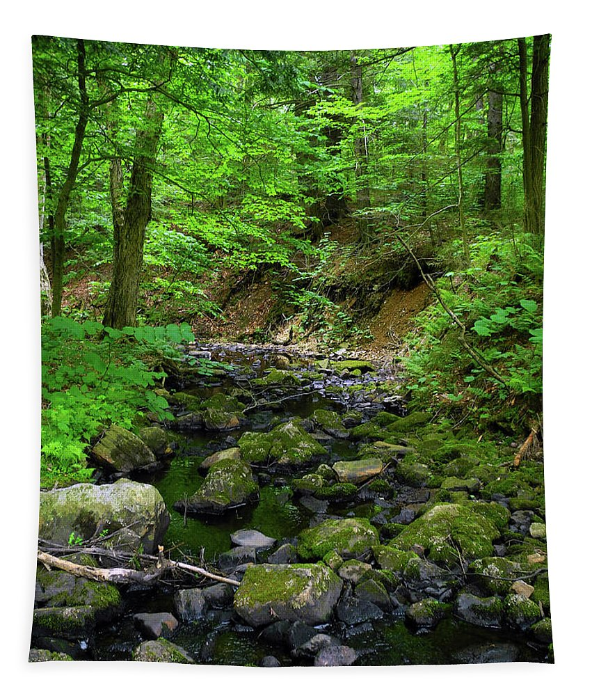 Creek Crossing In Ma Tapestry featuring the photograph Creek Crossing In Ma by Raymond Salani III