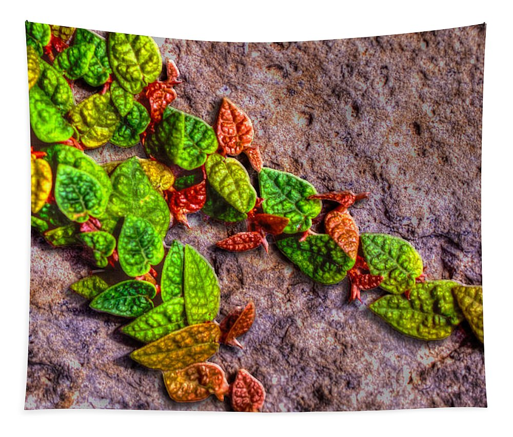 Photography Tapestry featuring the photograph Creeping by Paul Wear