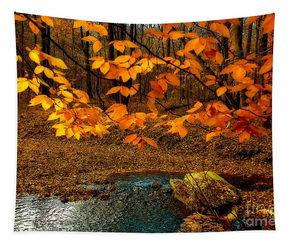 Nature Tapestry featuring the photograph Crossing Over by Lois Bryan