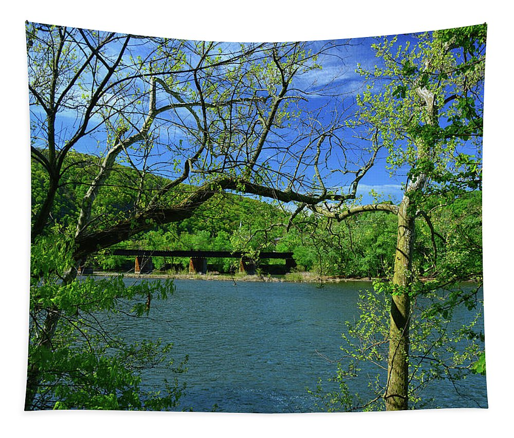 Csx Transportation Tapestry featuring the photograph Csx Transportation Bridge by Raymond Salani III