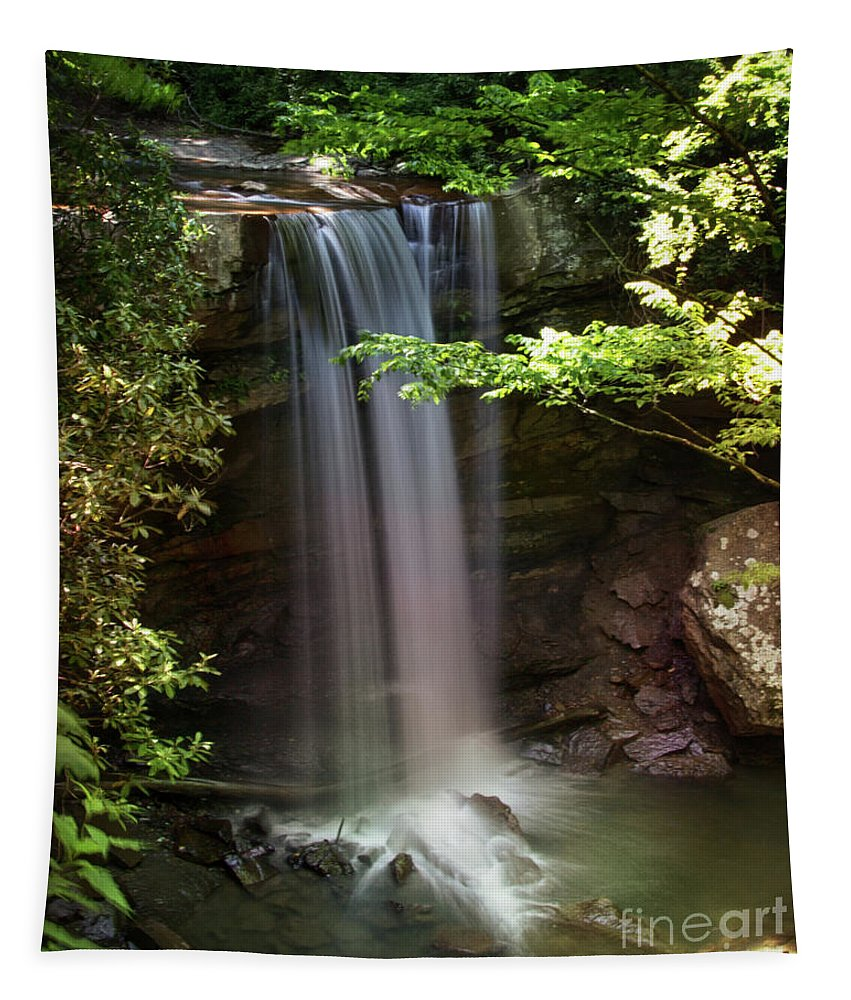Cucumber Falls Tapestry featuring the photograph Cucumber Falls by Tom Gari Gallery-Three-Photography