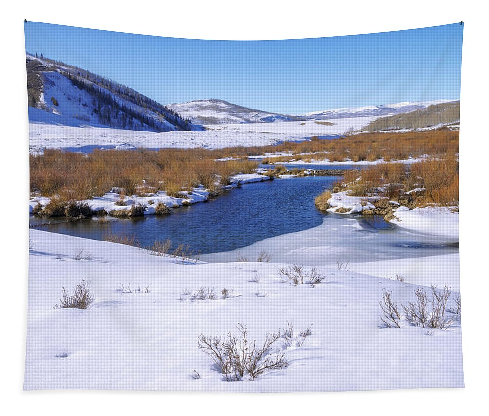 Currant Creek On Ice Tapestry featuring the photograph Currant Creek On Ice by Chad Dutson