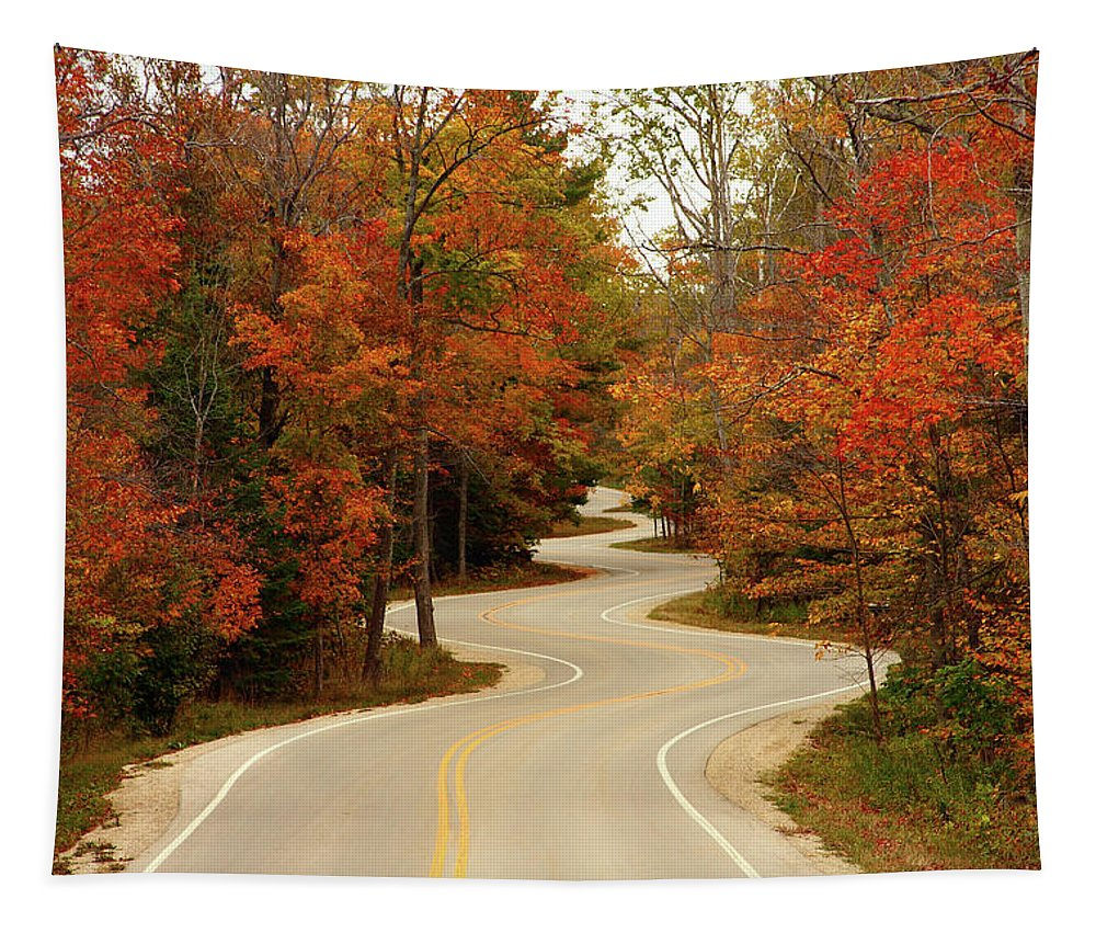 3scape Tapestry featuring the photograph Curvy Fall by Adam Romanowicz
