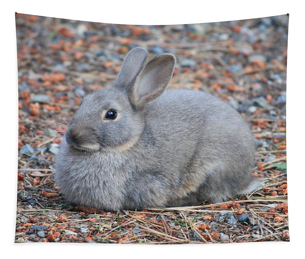 Rabbit Tapestry featuring the photograph Cute Campground Rabbit by Carol Groenen