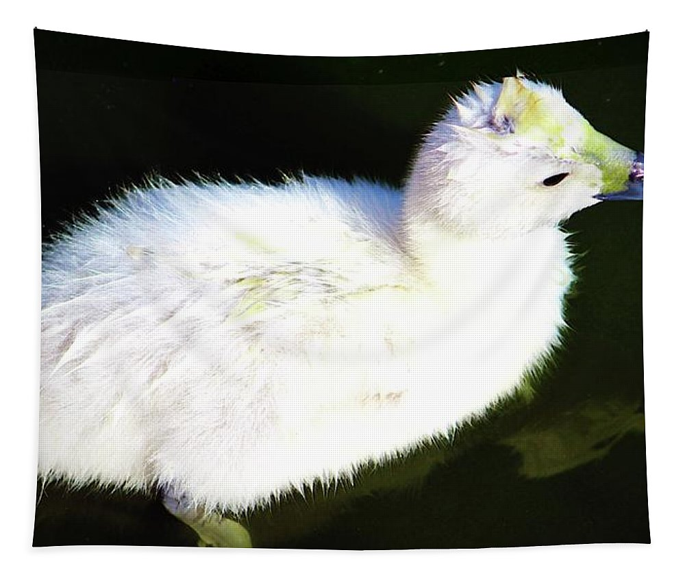 Cygnet Tapestry featuring the photograph Cygnet by Cynthia Guinn