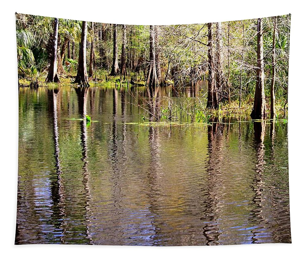 Cypress Trees Tapestry featuring the photograph Cypress Trees Along The Hillsborough River by Carol Groenen