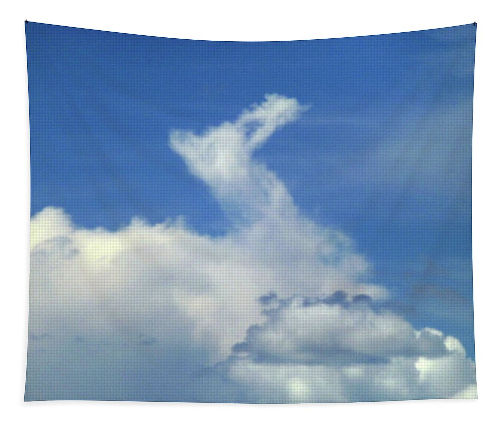 Cloud Camel Tapestry featuring the photograph D09148-dc Cloud Camel by Ed Cooper Photography