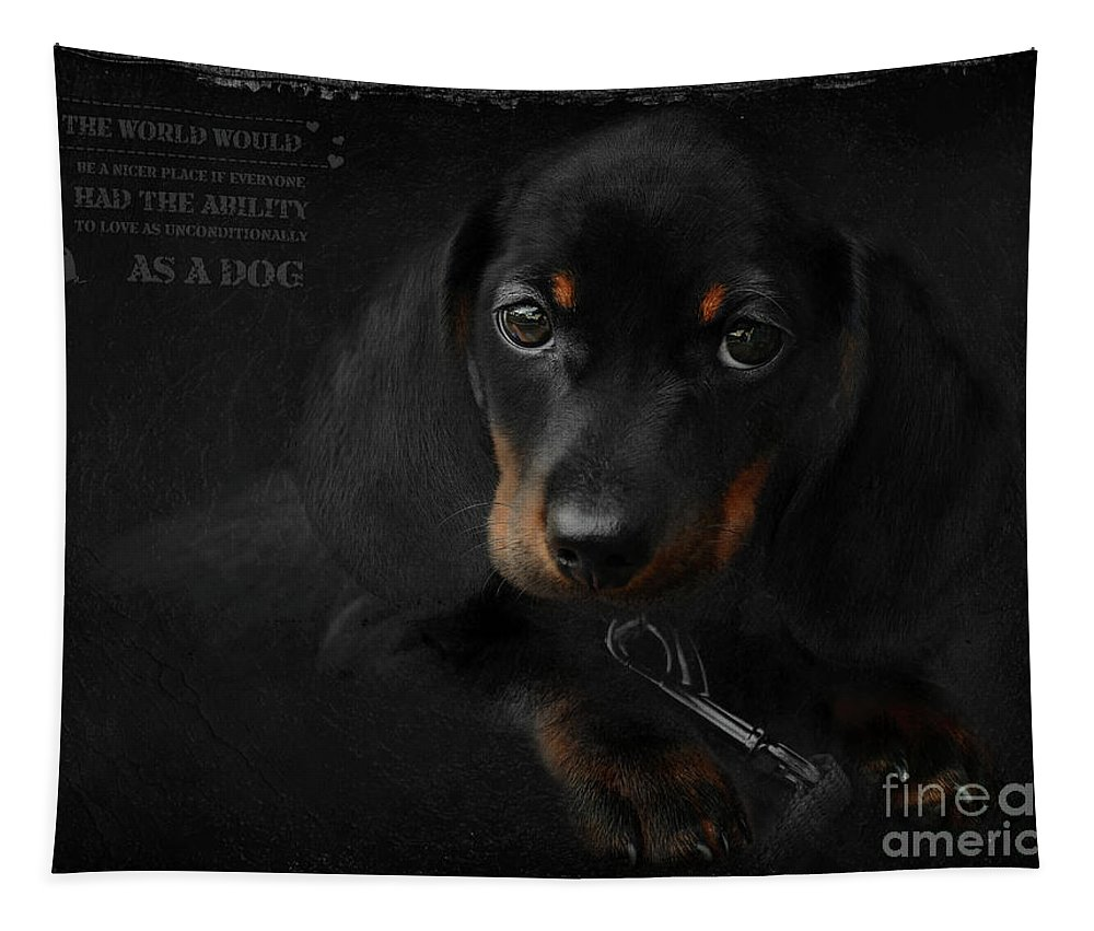 Dachshund Tapestry featuring the digital art Dachshund - Puppy Love by Maria Astedt