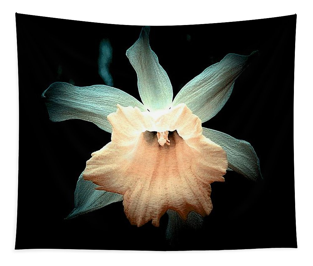 Daffodil Tapestry featuring the photograph Daffodil #19 by Ninie AG