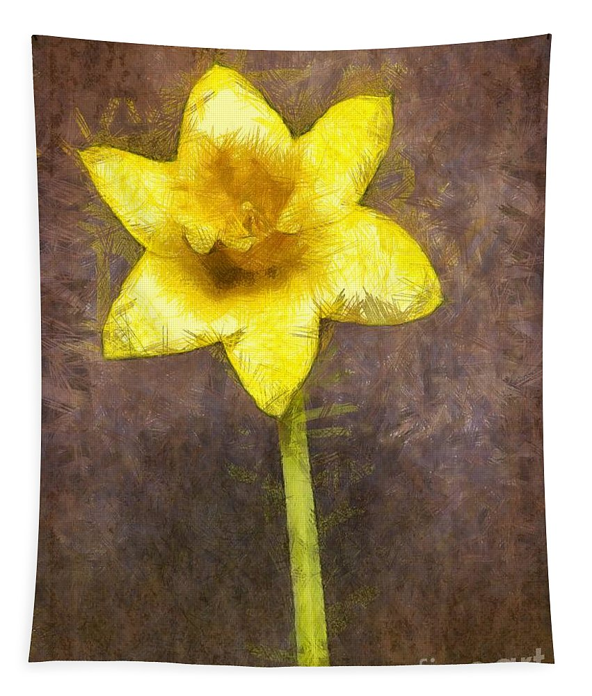 Spring Tapestry featuring the photograph Daffodil Pencil by Edward Fielding