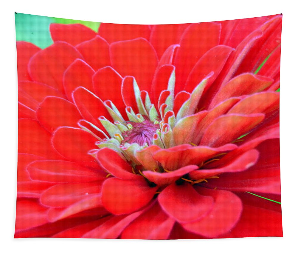 Dahlia Petals Tapestry featuring the photograph Dahlia Petals by Lisa Wooten