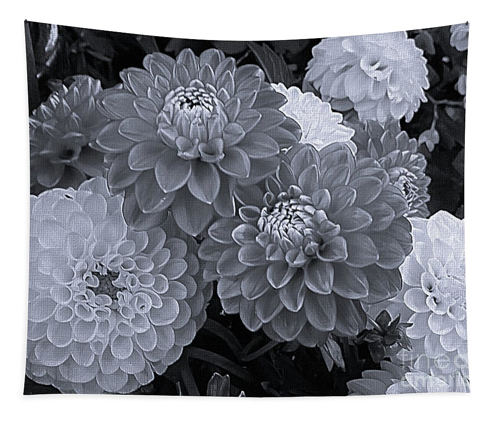 Mona Stut Tapestry featuring the photograph Dahlias Multi Bw by Mona Stut