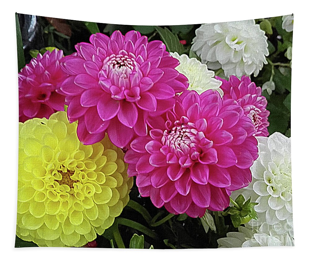 Mona Stut Tapestry featuring the photograph Dahlias Multi by Mona Stut