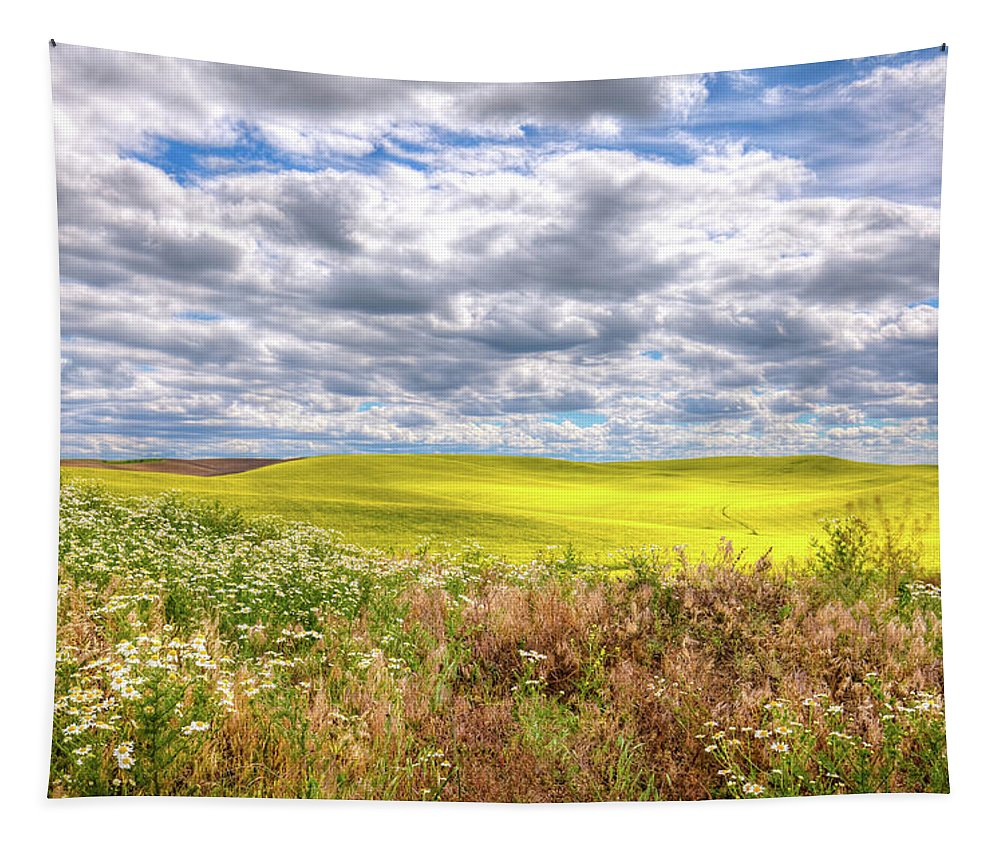 Daisies And Canola Tapestry featuring the photograph Daisies And Canola by David Patterson