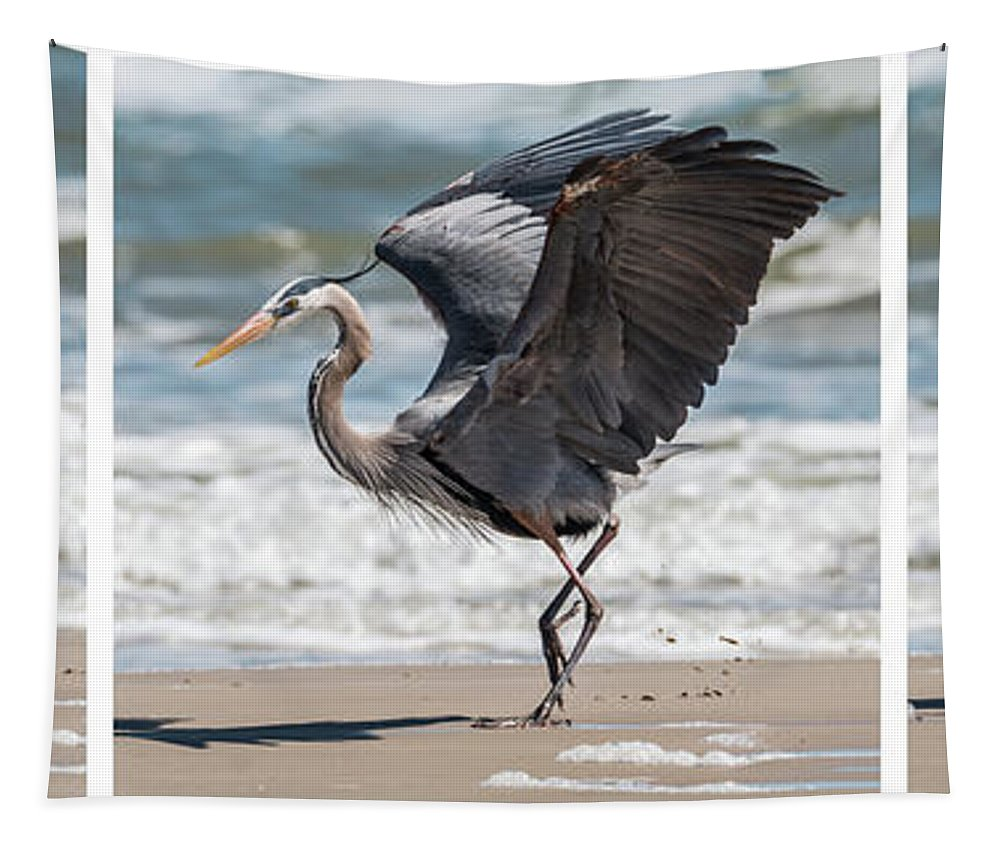 Bird Tapestry featuring the photograph Dancing Heron Triptych by Patti Deters