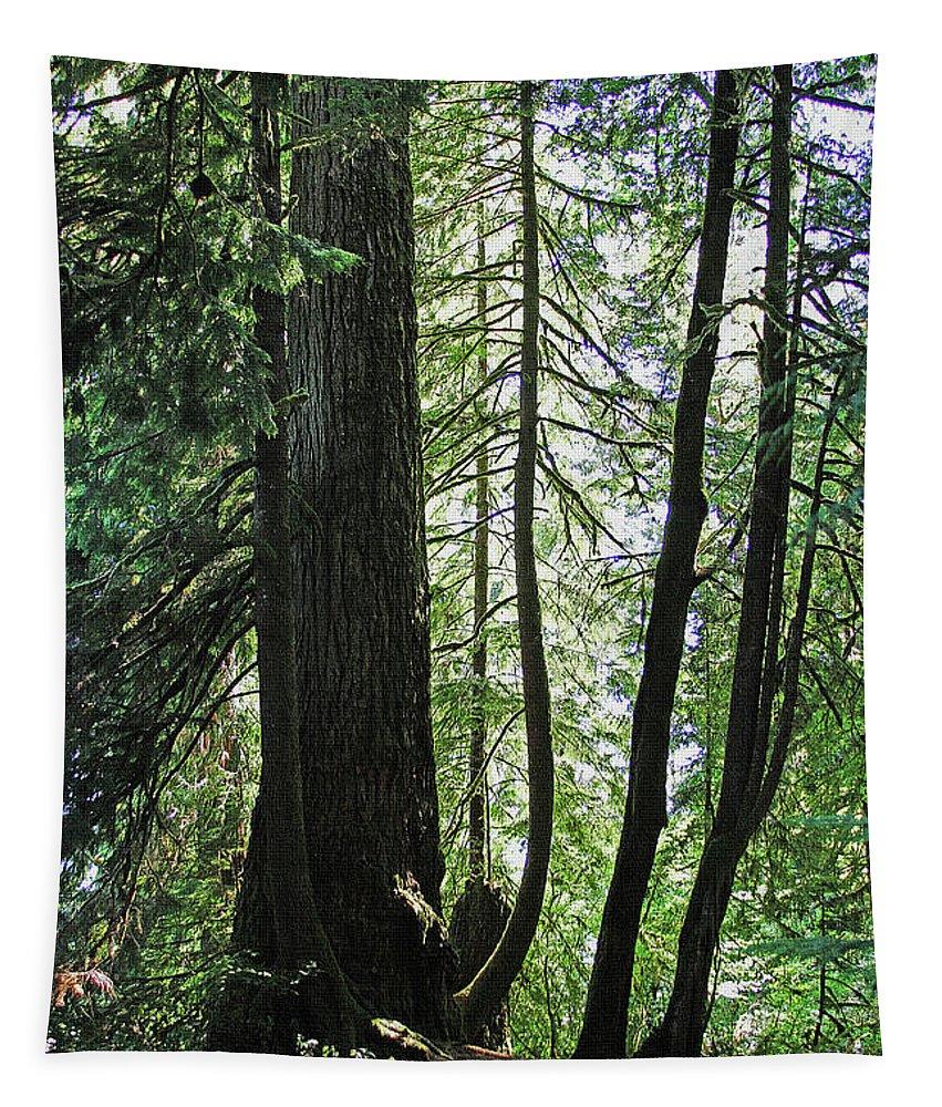 Dark Forest Tapestry featuring the digital art Dark Forest by Tom Janca