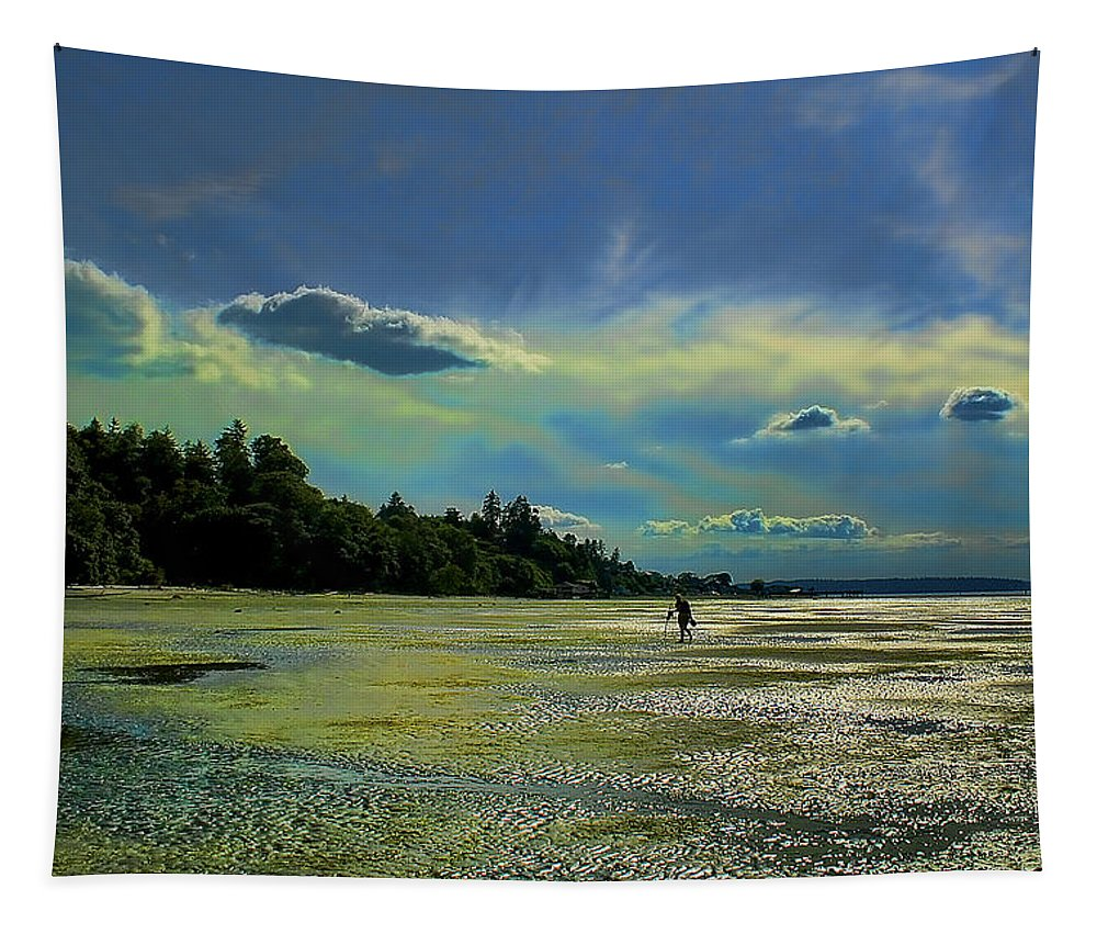 Federal Way Tapestry featuring the photograph Dash Point State Park by David Patterson