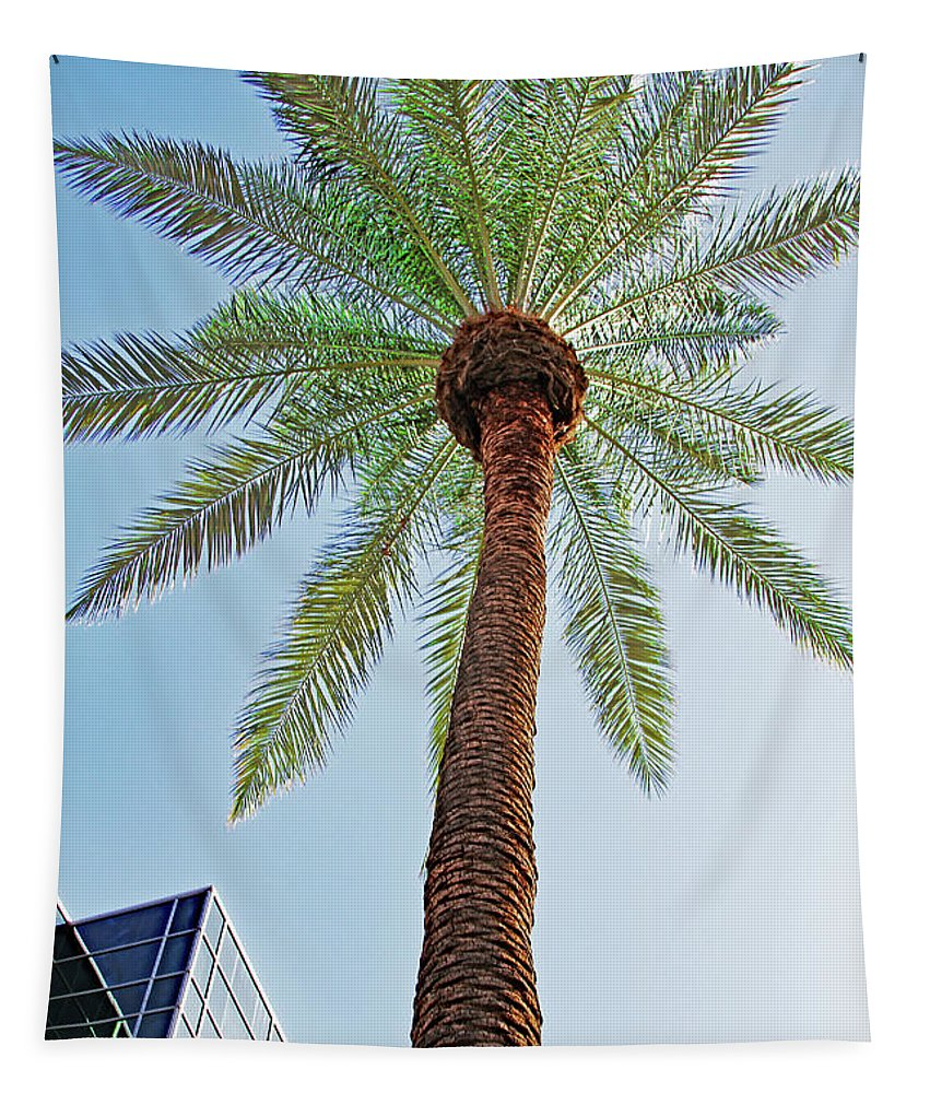 Date Palm In The City Tapestry featuring the digital art Date Palm In The City by Tom Janca