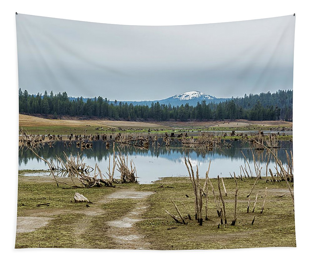 Landscape Tapestry featuring the photograph Davis Creek And Maiden Peak by Belinda Greb