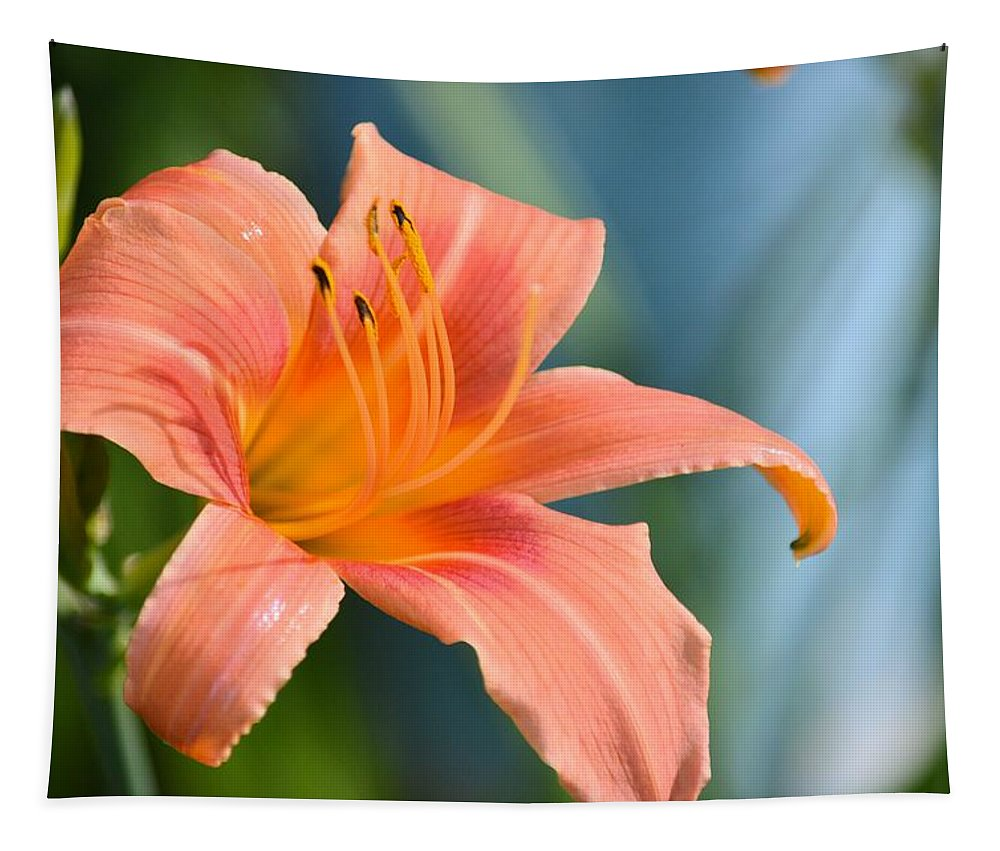 Lilly Tapestry featuring the photograph Day Lilly by Bonfire Photography