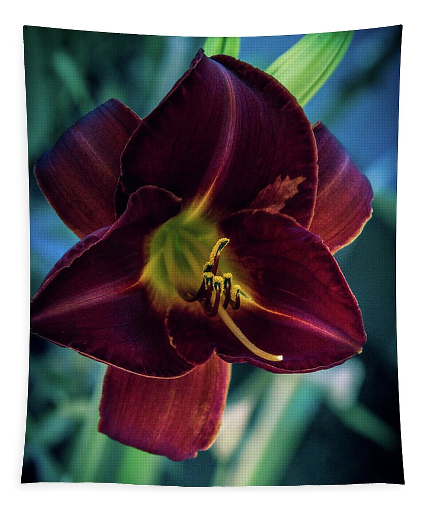 Day Lily Tapestry featuring the photograph Day Lily Dark by Terry Davis